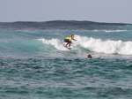 Or Surfpack 6 jours 7 nuits d'hebergement de surf 50€