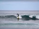 Surf Holidays in Tenerife €25
