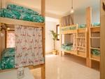 Avocat Surf Hostel - 20 mètres des spots 24€